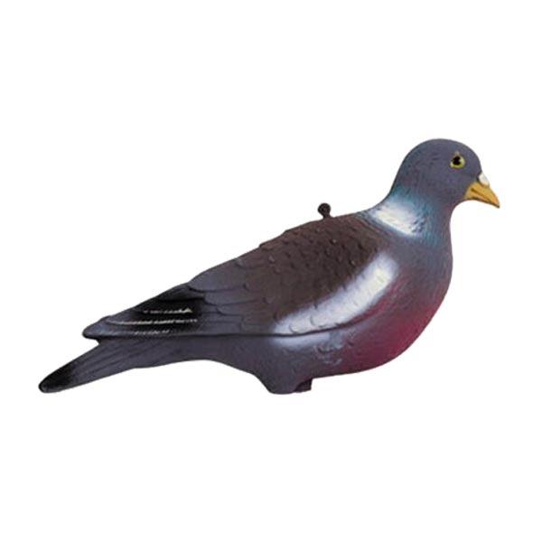 Forme de pigeon